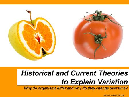 Historical and Current Theories to Explain Variation Why do organisms differ and why do they change over time? www.onacd.ca.