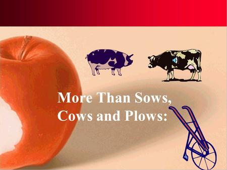 More Than Sows, Cows and Plows: School-based Agricultural Education Today.