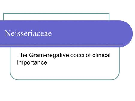 Neisseriaceae The Gram-negative cocci of clinical importance.
