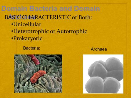 Domain Bacteria and Domain Archaea Bacteria: Archaea BASIC CHARACTERISTIC of Both: Unicellular Heterotrophic or Autotrophic Prokaryotic.
