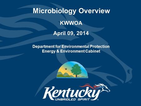 Microbiology Overview KWWOA April 09, 2014 Department for Environmental Protection Energy & Environment Cabinet.