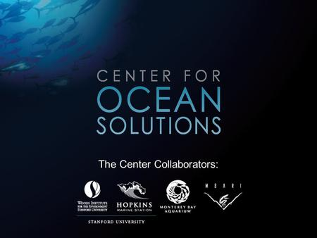 The Center Collaborators:. Focusing on: Ecosystem Health Climate Change and the Ocean The Land-Sea Interaction Fisheries and Ocean Education.