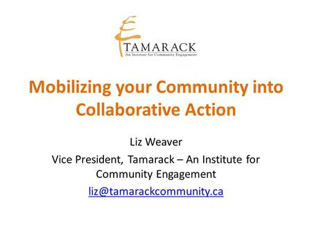 Mobilizing your Community into Collaborative Action Liz Weaver Vice President, Tamarack – An Institute for Community Engagement