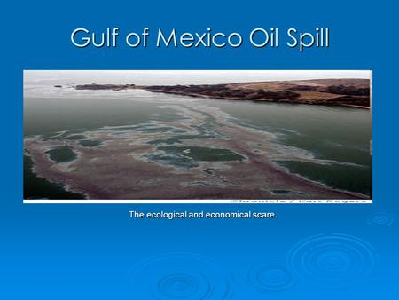 Gulf of Mexico Oil Spill The ecological and economical scare.