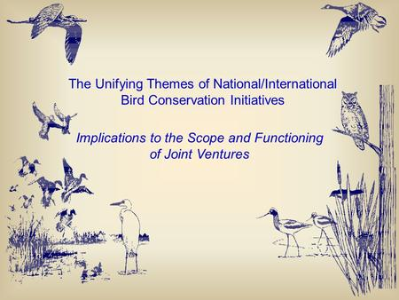 The Unifying Themes of National/International Bird Conservation Initiatives Implications to the Scope and Functioning of Joint Ventures.