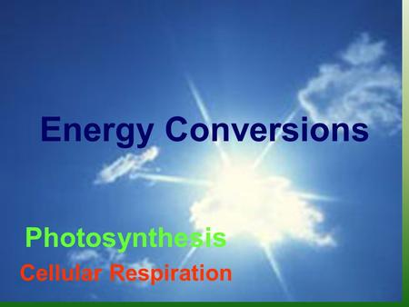 Energy Conversions Photosynthesis Cellular Respiration.