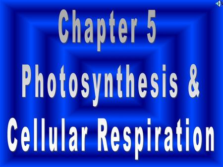 Chapter 5 Photosynthesis & Cellular Respiration.
