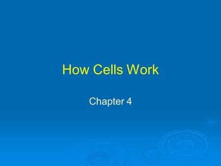 How Cells Work Chapter 4. Beer, Enzymes and Your Liver Alcohol is toxic Cells in liver break down alcohol to nontoxic compounds Breakdown is accelerated.