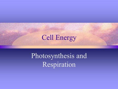 Cell Energy Photosynthesis and Respiration. Photosynthesis Process by which plants & certain other organisms use sunlight to make sugar Energy conversion-