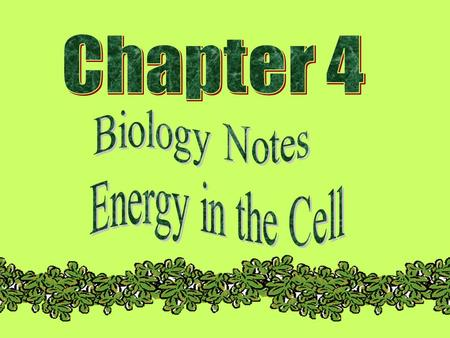 Chapter Objectives  You will learn what ATP is  You will explain how ATP provides energy for the cell  You will describe how chloroplasts trap the.