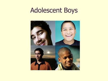 Adolescent Boys. Priority Areas Body Image Nutrition and obesity Substance Abuse Violence and safety.