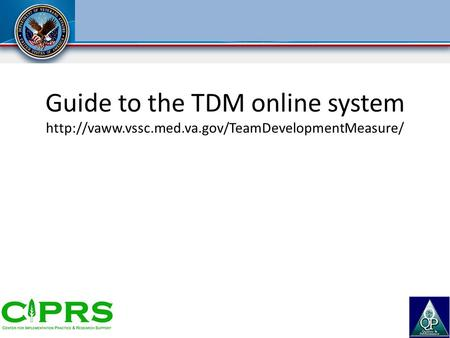 Guide to the TDM online system