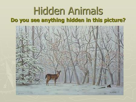 Hidden Animals Do you see anything hidden in this picture?