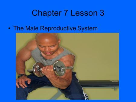 Chapter 7 Lesson 3 The Male Reproductive System The Human Reproductive System Reproduction – The process by which living organisms produce new individuals.