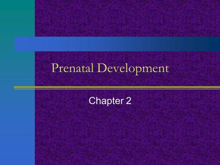 Prenatal Development Chapter 2.