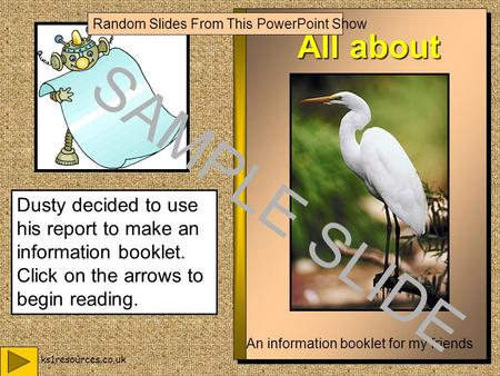 www.ks1resources.co.uk All about Birds An information booklet for my friends Dusty decided to use his report to make an information booklet. Click on.