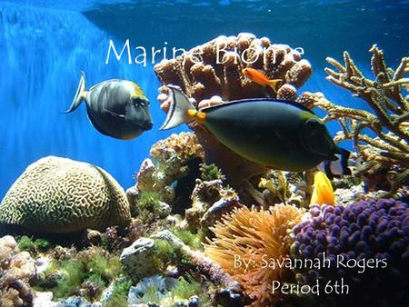 Marine Biome By: Savannah Rogers Period 6th. Summary Marine regions cover about three-fourths of the Earth's surface It includes oceans, coral reefs,