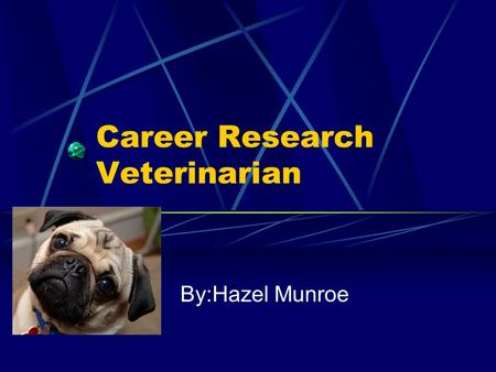 Career Research Veterinarian By:Hazel Munroe Veterinarian I chose veterinarian because I love animals. I love how you get to see lots of pets and wild.