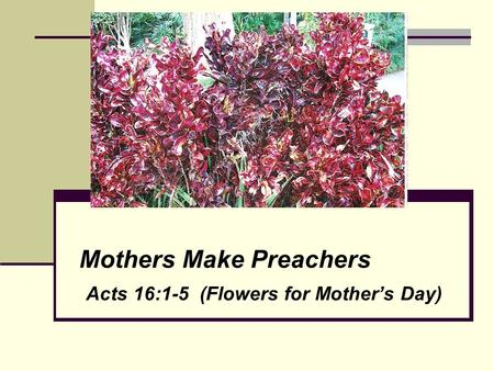 Mothers Make Preachers Acts 16:1-5 (Flowers for Mother's Day)