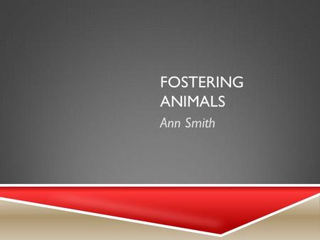 FOSTERING ANIMALS Ann Smith. PRODUCT AND STEPS TO BEGIN  Facilitator  Volunteer with an Animal Rescue Group or Humane Society  Prepare an area in my.