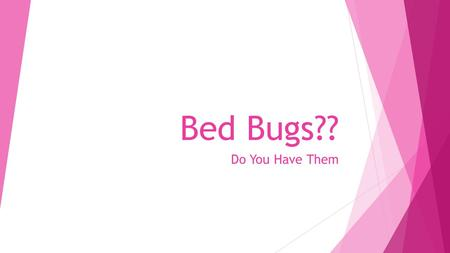 Bed Bugs?? Do You Have Them. This is an adult Bed Bug… They are real and becoming an epidemic.