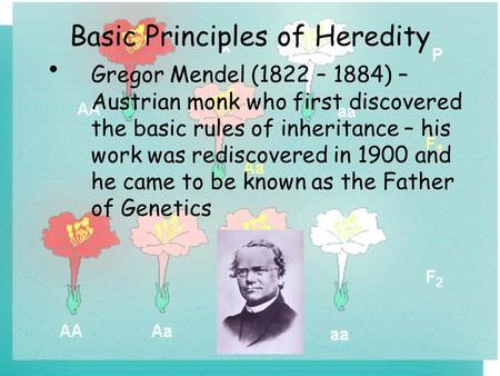 essay on genetics and heredity