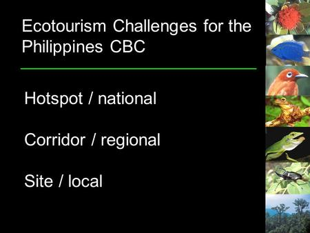 Ecotourism Challenges for the Philippines CBC Hotspot / national Corridor / regional Site / local.