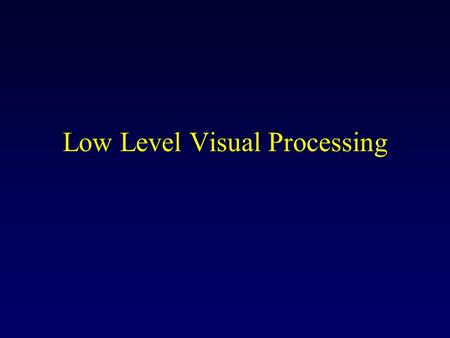 Low Level Visual Processing. Information Maximization in the Retina Hypothesis: ganglion cells try to transmit as much information as possible about the.