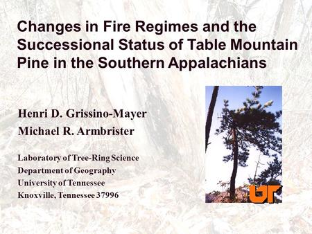 Changes in Fire Regimes and the Successional Status of Table Mountain Pine in the Southern Appalachians Henri D. Grissino-Mayer Michael R. Armbrister Laboratory.