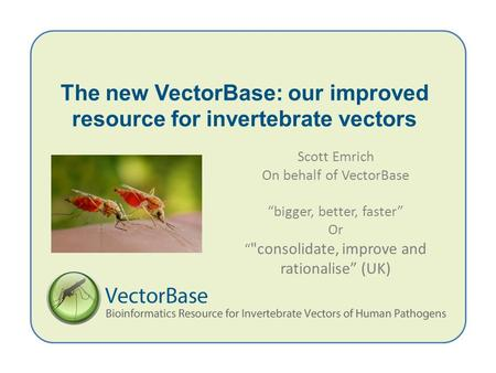 "The new VectorBase: our improved resource for invertebrate vectors Scott Emrich On behalf of VectorBase ""bigger, better, faster"" Or "" consolidate, improve."