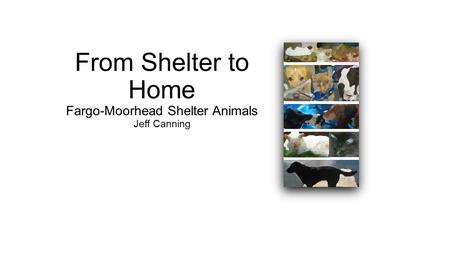 From Shelter to Home Fargo-Moorhead Shelter Animals Jeff Canning.