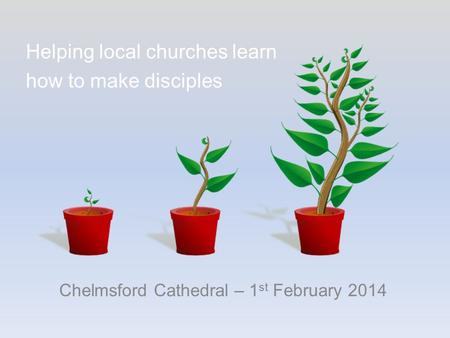 Chelmsford Cathedral – 1 st February 2014 Helping local churches learn how to make disciples.
