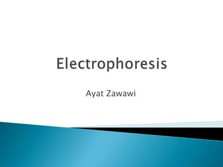 Ayat Zawawi.  Principle  Factors affecting the distance of movement  Application  Polyacrylamide Gel Electrophoresis (PAGE)  Hemoglobin Electrophoresis.