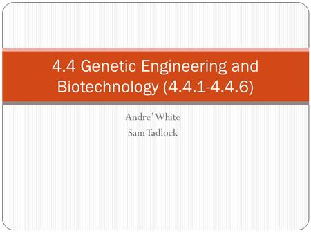 Andre' White Sam Tadlock 4.4 Genetic Engineering and Biotechnology (4.4.1-4.4.6)