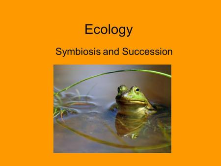 Ecology Symbiosis and Succession. Ecology What is ecology? The study of organisms and how they interact with each other and their environment (the ecosystem)