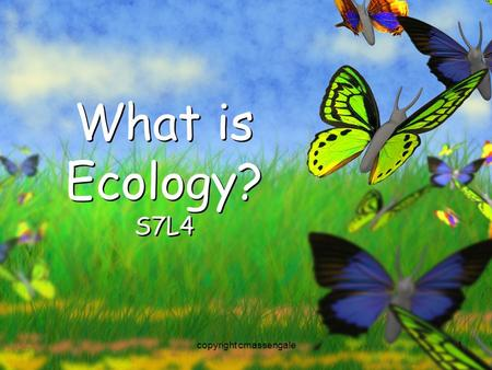 1 What is Ecology? S7L4 copyright cmassengale. 2 Organisms and Their Environment copyright cmassengale.