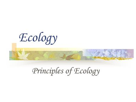 Ecology Principles of Ecology.