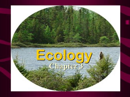 Ecology Chapter 3. Ecology The study of the relationship between organisms and their environments.