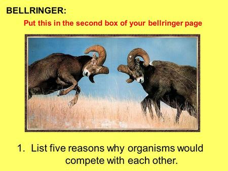 BELLRINGER: 1. List five reasons why organisms would compete with each other. Put this in the second box of your bellringer page.