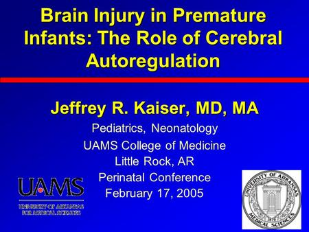 Brain Injury in Premature Infants: The Role of Cerebral Autoregulation