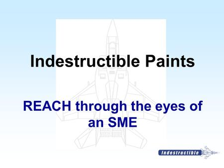 REACH through the eyes of an SME Indestructible Paints.
