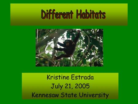 Kristine Estrada July 21, 2005 Kennesaw State University.