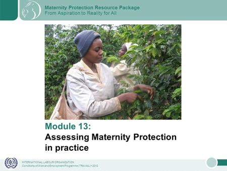 INTERNATIONAL LABOUR ORGANIZATION Conditions of Work and Employment Programme (TRAVAIL) 2012 Module 13: Assessing Maternity Protection in practice Maternity.