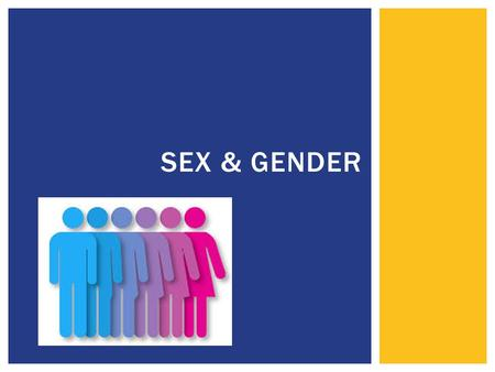 "SEX & GENDER.  Sex  Largely defined in biological terms  Male – Female  Gender  Largely defined in social/cultural terms  Masculine – Feminine ""Being."