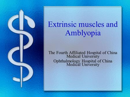 Extrinsic muscles and Amblyopia The Fourth Affiliated Hospital of China Medical University Ophthalmology Hospital of China Medical University.