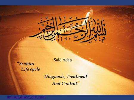 """ Scabies Life cycle Diagnosis, Treatment And Control"" Said Adan animal.discovery.com."