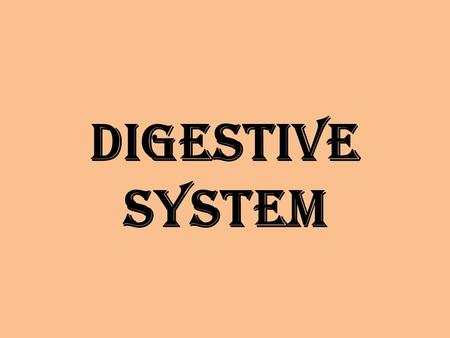 Digestive system. Structure Abdominal Quadrants.