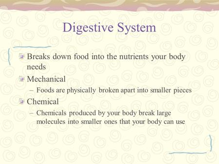 Digestive System Breaks down food into the nutrients your body needs Mechanical –Foods are physically broken apart into smaller pieces Chemical –Chemicals.