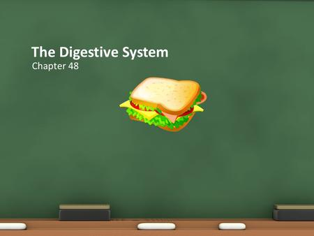 The Digestive System Chapter 48 Digestion is the mechanical and chemical breakdown of food into forms that cells can absorb. The FUNCTIONs of the Digestive.