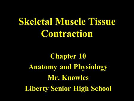 Skeletal Muscle Tissue Contraction Chapter 10 Anatomy and Physiology Mr. Knowles Liberty Senior High School.